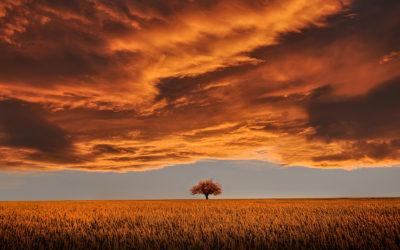 Élj a színek útmutatásával: Szeptember 29. – Október 3.